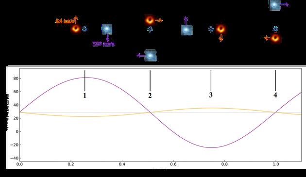 图二 LB-1系统中B型星和黑洞的运动规律和速度曲线