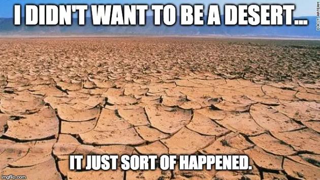 """当人们提及""""沙漠""""概念时,多数人就会联想到撒哈拉沙漠跌宕起伏的沙丘,不断流动的沙丘尽收眼底。这是电影、电视节目和大众文化所描述的沙漠概念,但事实并非如此。"""